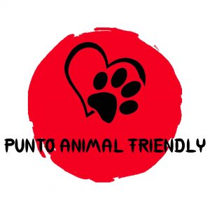 punto animal friendly biella legami di cuore